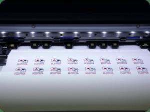 termosaldabile da stampa stampato e spellicolato
