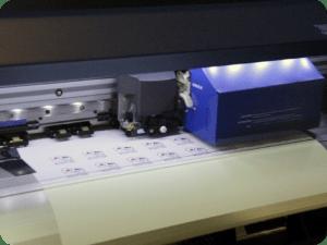 stampa termosaldabile per ecosolvente