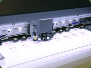 Taglio del termosaldabile con Roland Sg2-640